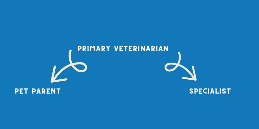 | Yellow and Black 72x36 Landscape Voters Education Banner | VetNOW | Veterinary Telemedicine Platform for Veterinary Specialty Care | 1000 Noble Energy Drive, Suite 600 Pittsburgh, PA 15317 | https://vetnow.com/